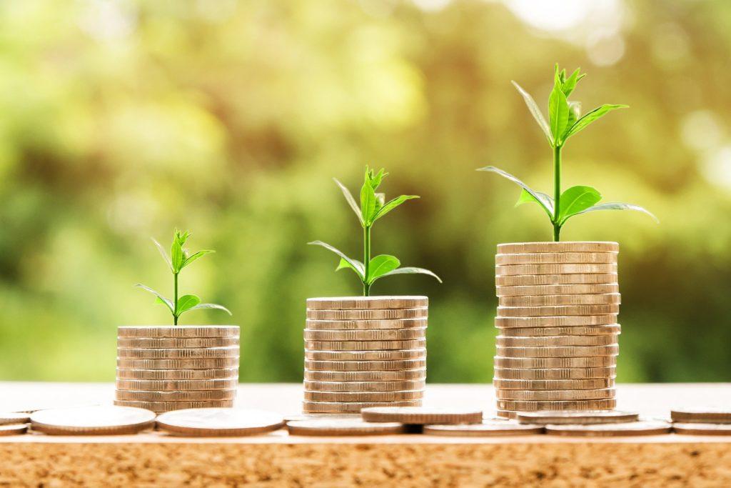 Foto de três pilhas de moedas, com pequenas plantas em cima. Ao fundo vemos plantas desfocadas. Imagem ilustrativa para texto tipos de seguro de vida.