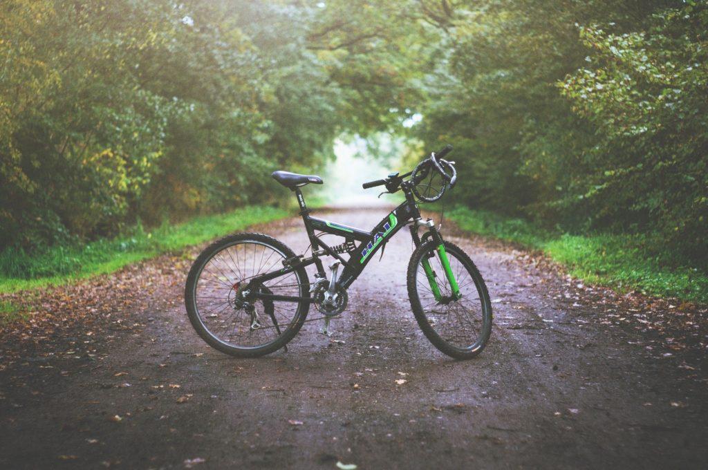 Imagem de uma bicicleta preta, no meio de um caminho de terra e com várias árvores ao redor.